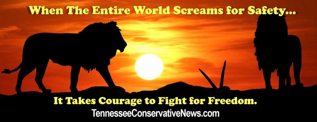 TennesseeConservativeNews.com_Fight For Freedom