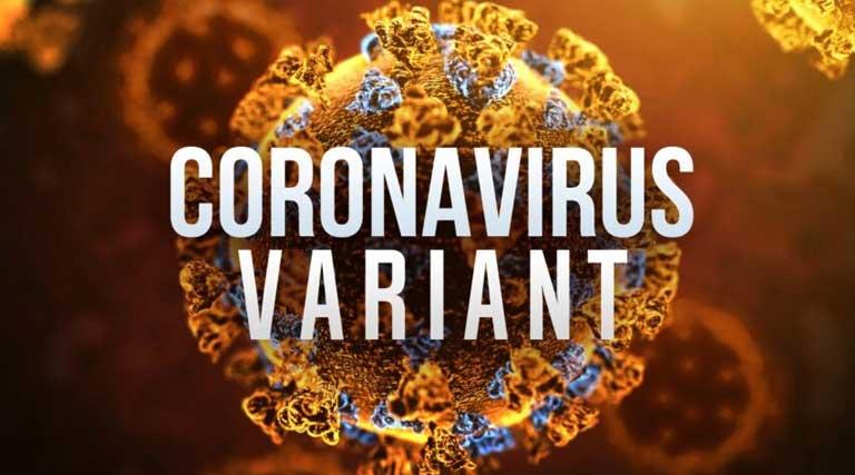 Coronavirus Variant_Covid-19 variant_Tennessee