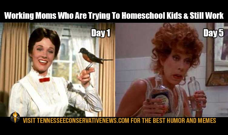 Working Moms Who Are Trying To Homeschool Kids & Still Work Humor Meme