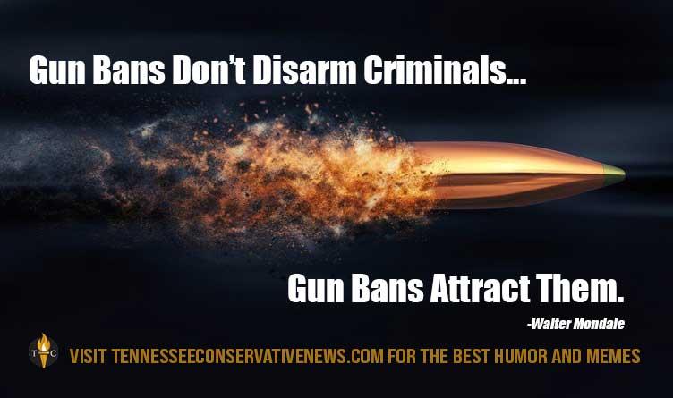 Gun Bans Don't Disarm Criminals...