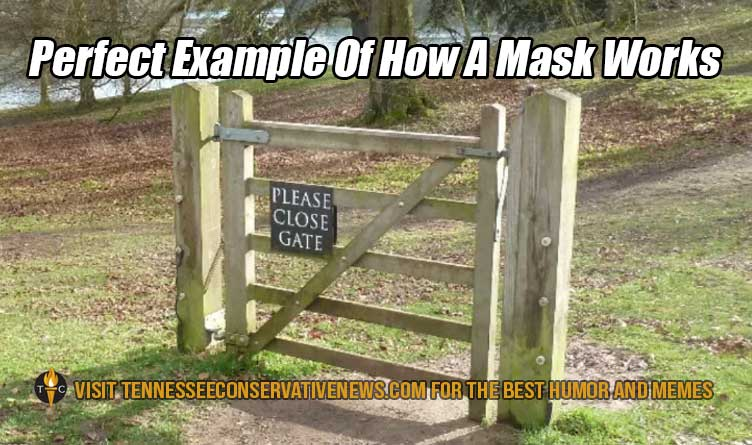 Perfect Example Of How A Mask Works... Meme
