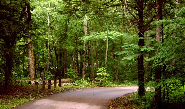 Cedars of Lebanon Park Tennessee