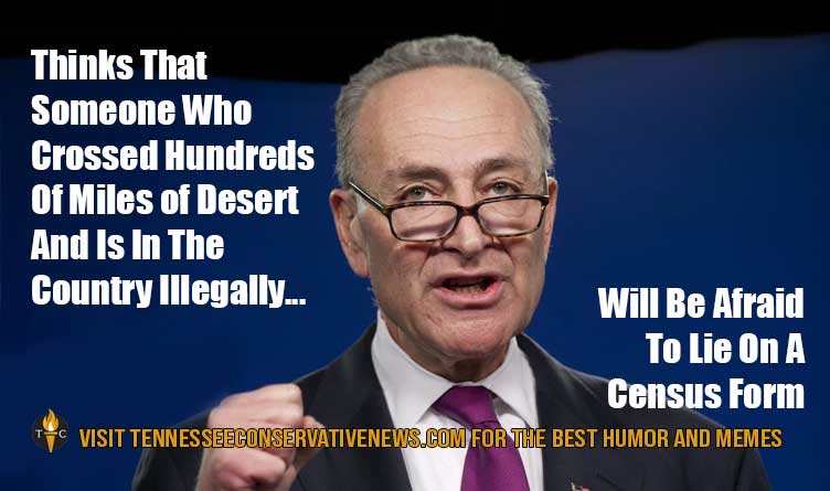 Chuck Schumer Illegal Immigrants Census Meme