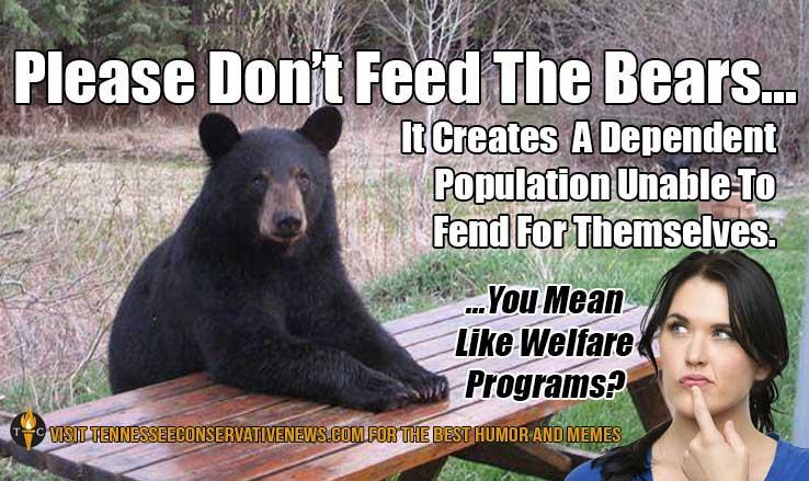 Please Don't Feed The Bears Meme
