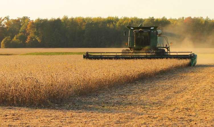 Tennessee farmer sues USDA over loan forgiveness program