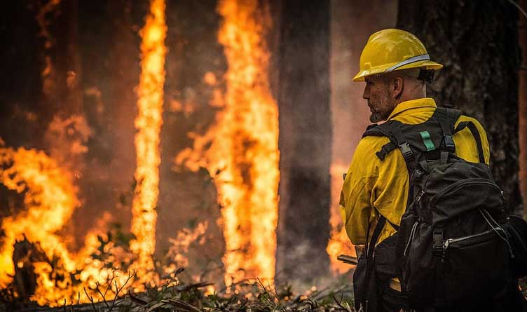 30 million people under excessive heat warnings in West as 300,000 acres burn in six states