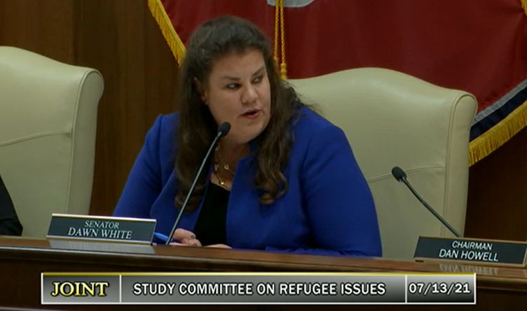 : Senator Dawn White (Chair) leads the second meeting of the Joint Study Committee on Refugee Issues