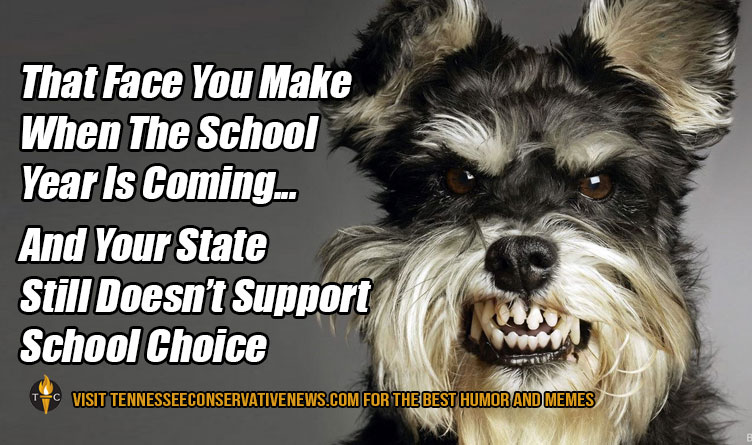 That Face You Make When The School Year Is Coming...And Your State Still Doesn't Support School Choice. Humor - Meme