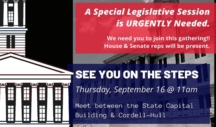BREAKING! Conservative TN Senators & 100% of House Ask Moderate McNally For Special Session To Protect Your Constitutional Rights!
