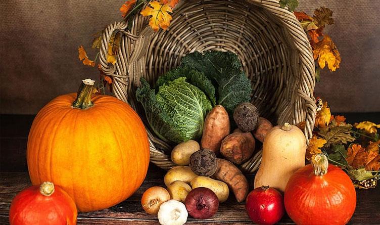 Tennessee Covid Numbers Decrease as Holiday Season Arrives